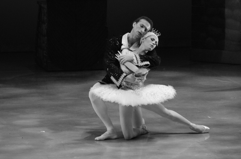 Swan Lake Ballet Jorgen Canada